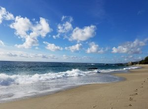 event request sand and waves thouand steps beach laguna beach ca